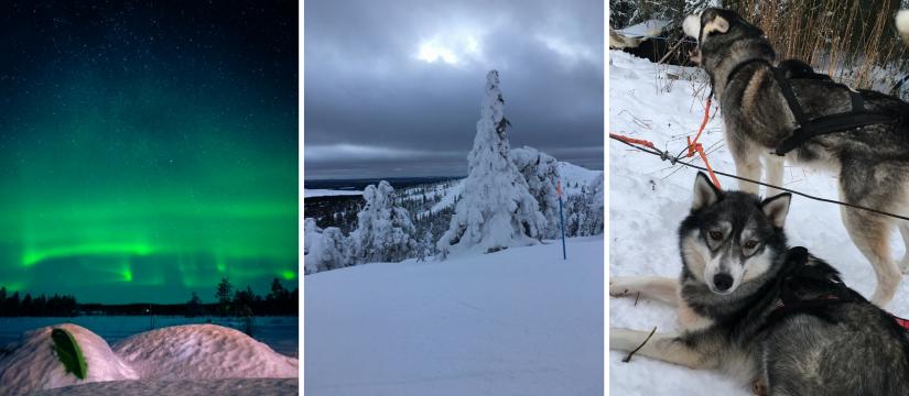 Base Camp Oulanka Finland